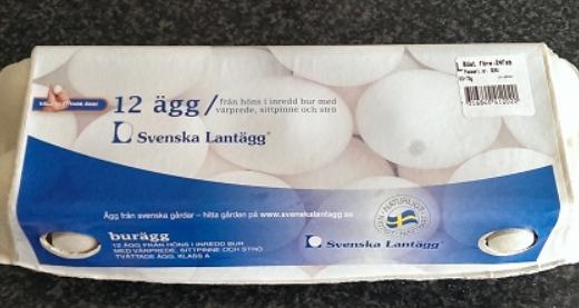 オランダで生卵は食べれる??